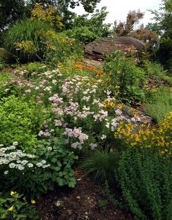The Ornamental Garden in August