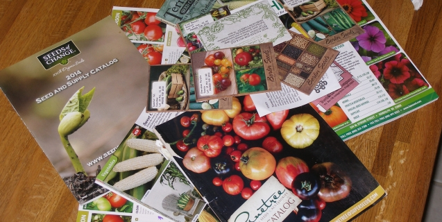 Seed  Catalogs 101