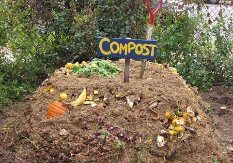 What's all the hype about compost?