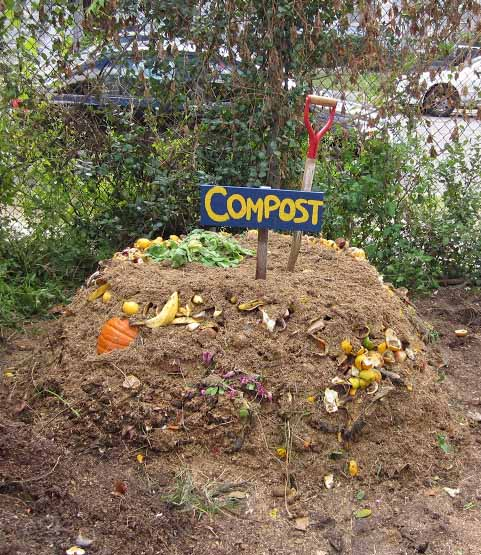 Where to Place Compost