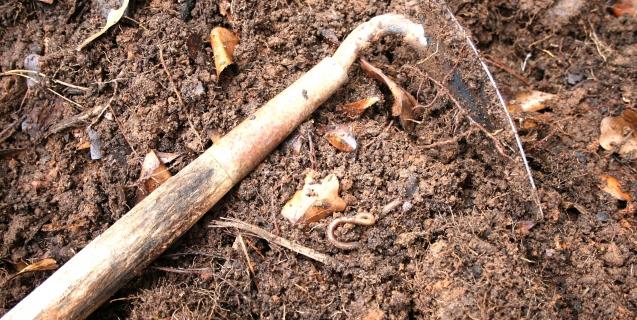 """Organic Matter — The Gardener's """"Silver Bullet"""""""