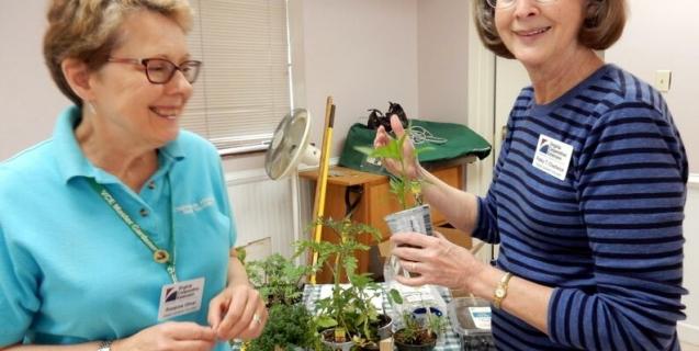 Garden Basics Classes, the PLA Seminar, and more!