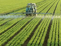 Glyphosate: Health Controversy, Benefits and Continuing Debate