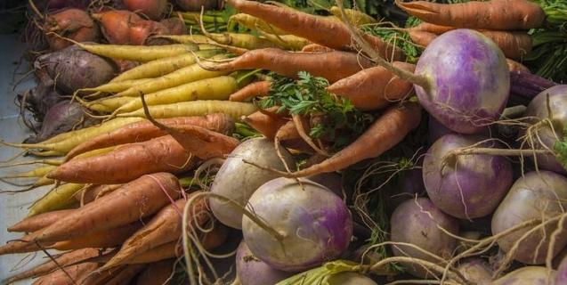 Root Vegetables: Underground Culinary Treasures | Piedmont ...