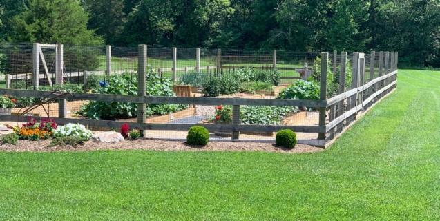 The Edible Garden: July