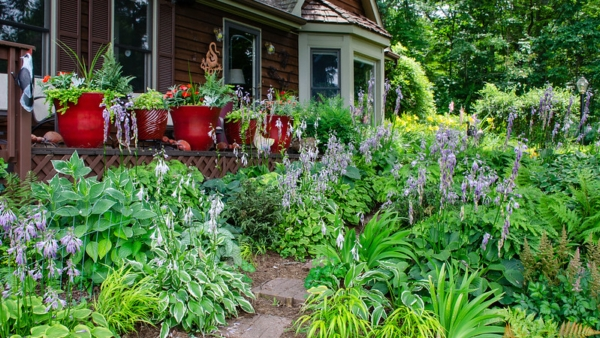 Beyond the Lawn: Imagine the Options